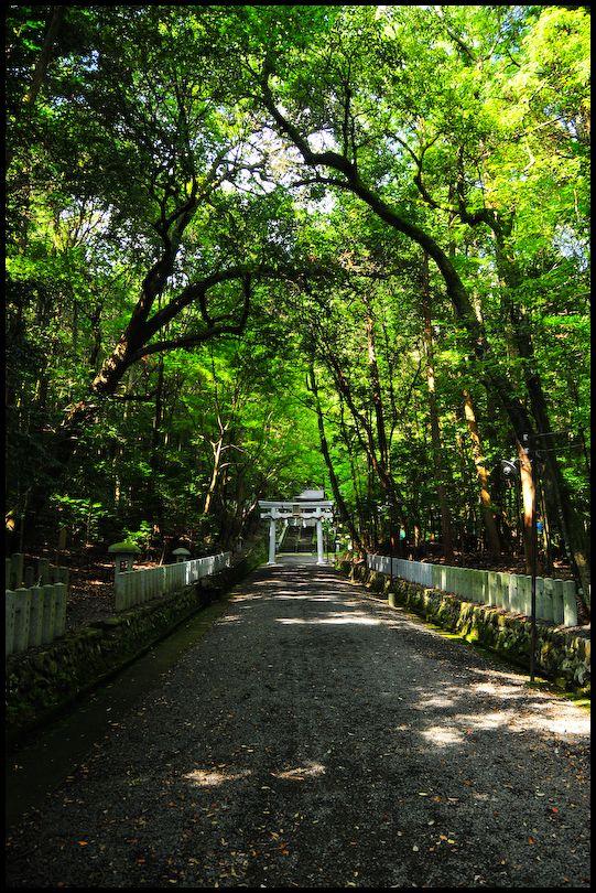 In the Presence (崇道神社)