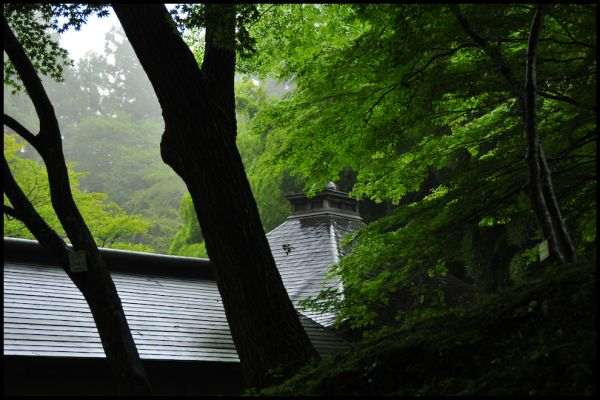 Rainy Day, Temple Roof
