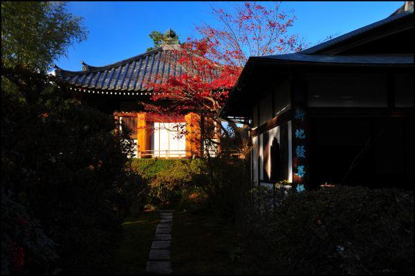 Entsuji Temple (圓通寺)
