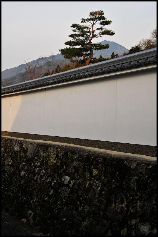 Mt. Hiei (比叡山)