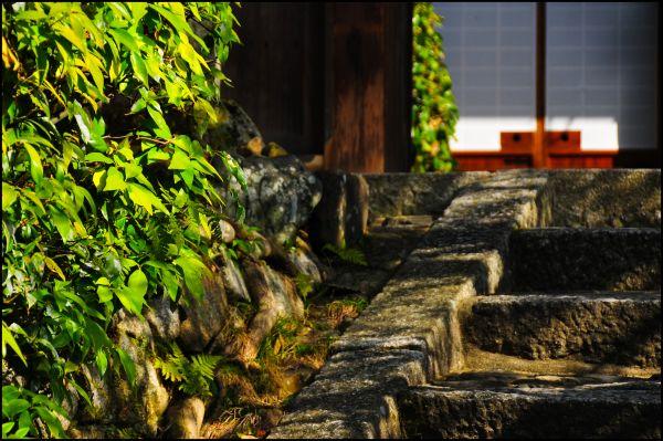 Entrance, Konpukuji Temple (金福寺)