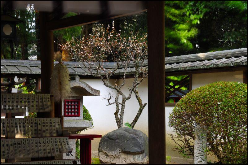 The Spirit Moves: Saginomori Shrine (鷺森神社)