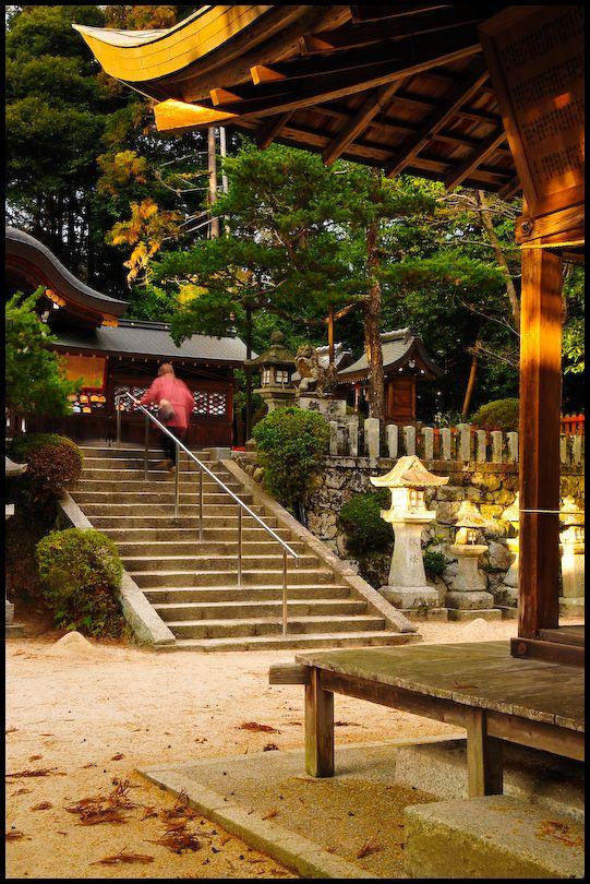 To Prayer: Saginomori Shrine (鷺森神社のお参りへ)