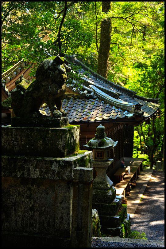 Mid-Afternoon Quiet, Sudo Shrine (崇道神社)