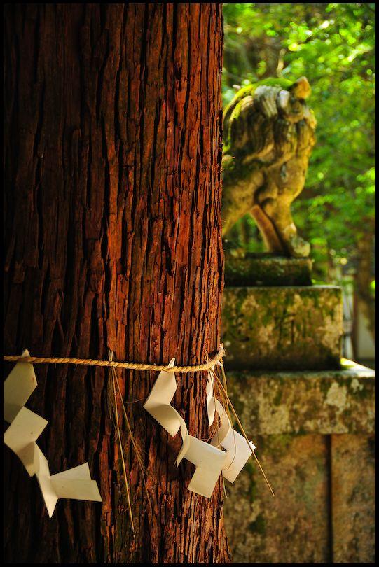 Sudo Shrine (崇道神社)