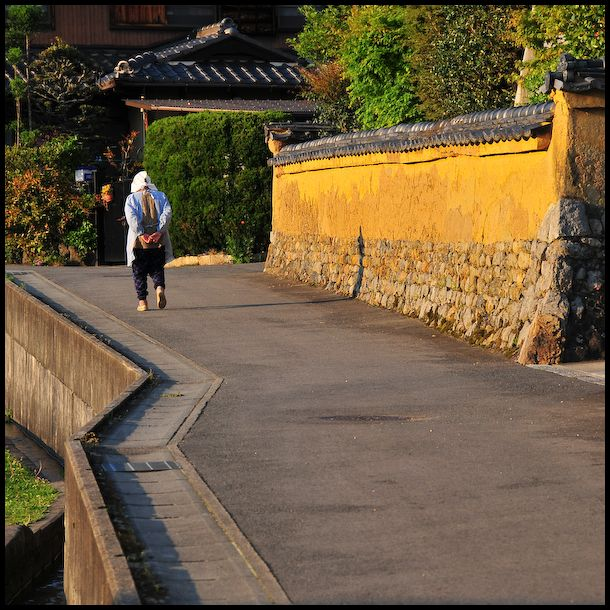 Afternoon Walk (散歩)