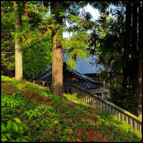 Iwakura Shrine (石座神社)