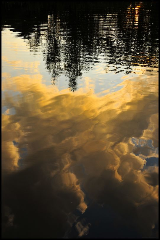 Pond, 4