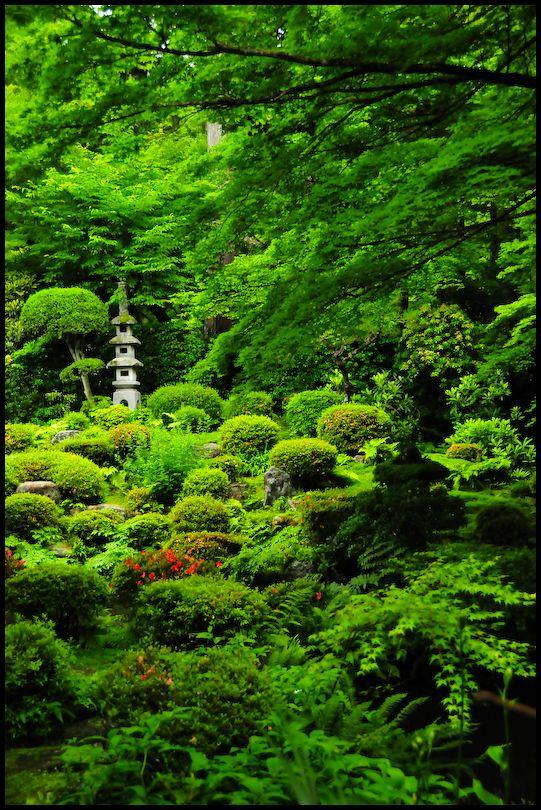 Fantasy in Green