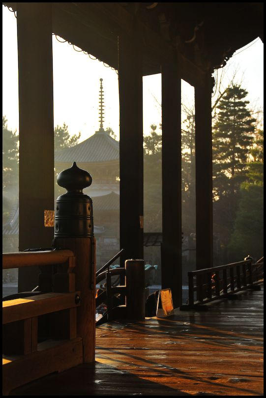 Winter Light: Chion-in Temple (知恩院)