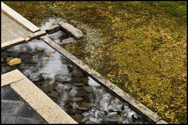 Rainy Day Zen, 2