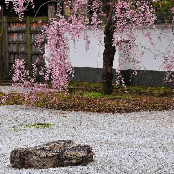 Iwakura Jisso-in (岩倉実相院)