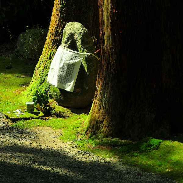 Sacred Spaces: An Offering (赤山禅院)