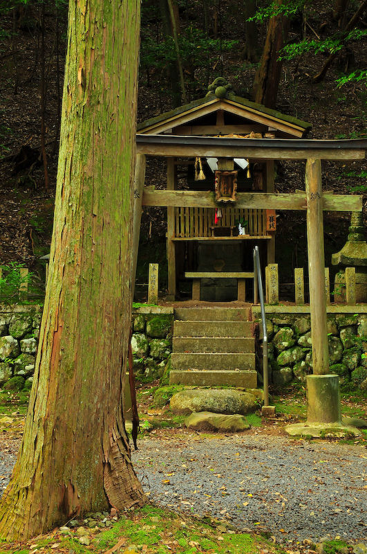 Sacred Spaces: Ancient Prayers (小野神社)