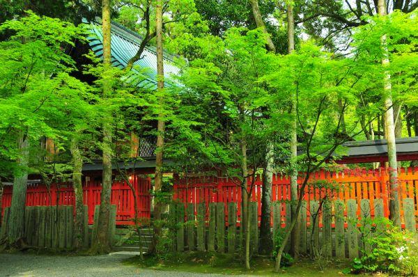 Sacred Spaces: Spring (赤山禅院)