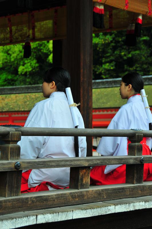 Dreams of Miyako, 16