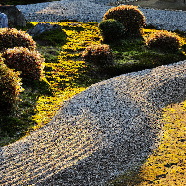Zen Garden, Late Afternoon