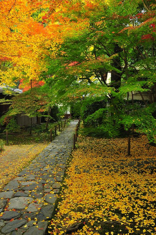 Renge-ji Temple, Another View