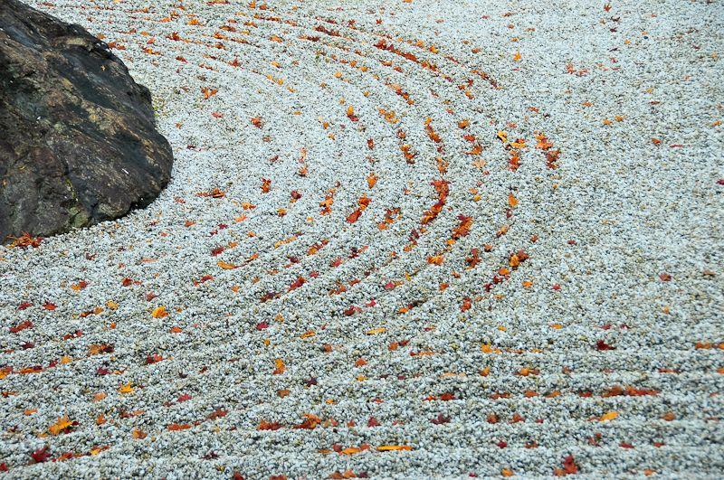 Zen Autumn