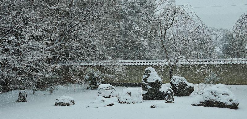 Winter Morning, Jisso-in Temple, 2