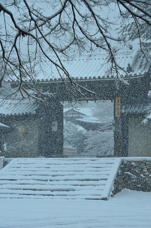 Winter Morning, Jisso-in Temple