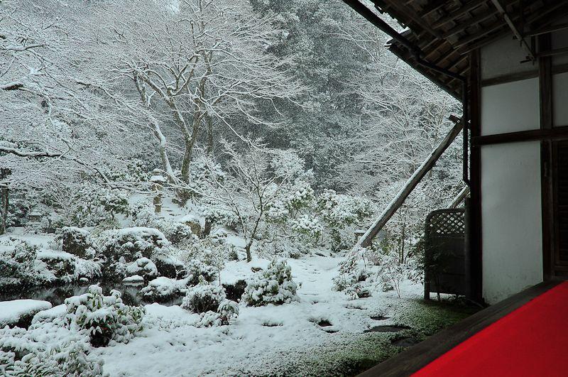 紅白、実相院 (Red and White, Jisso-in)