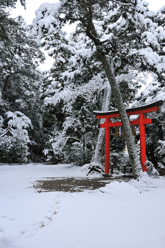 The Gods in Winter, 2 (長谷八幡宮)