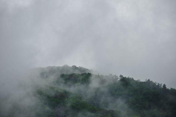 Rainy Season, 2