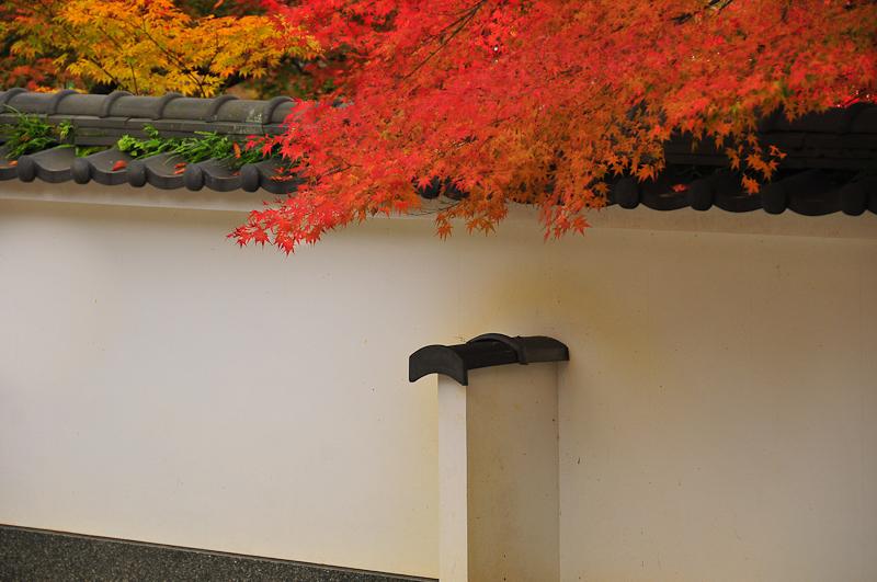 Autumn Sneaks In