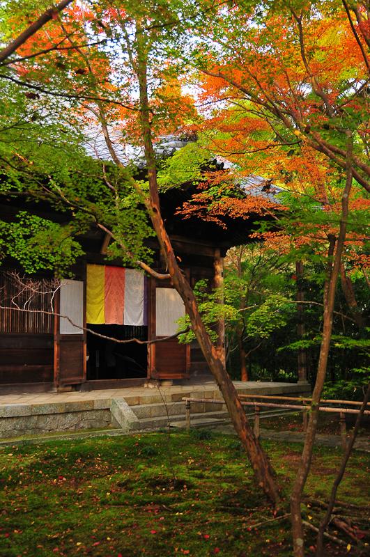 秋の蓮華寺