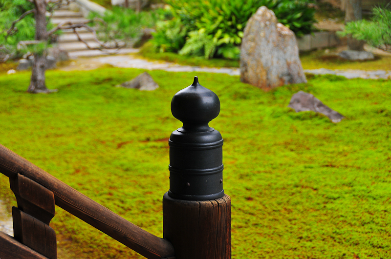 Garden 「お庭」