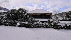 Winter Rice Field 「冬の田んぼ」