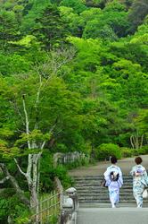 Summer Stroll 「夏の散歩」
