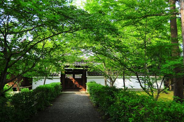 An Entrance「入口」
