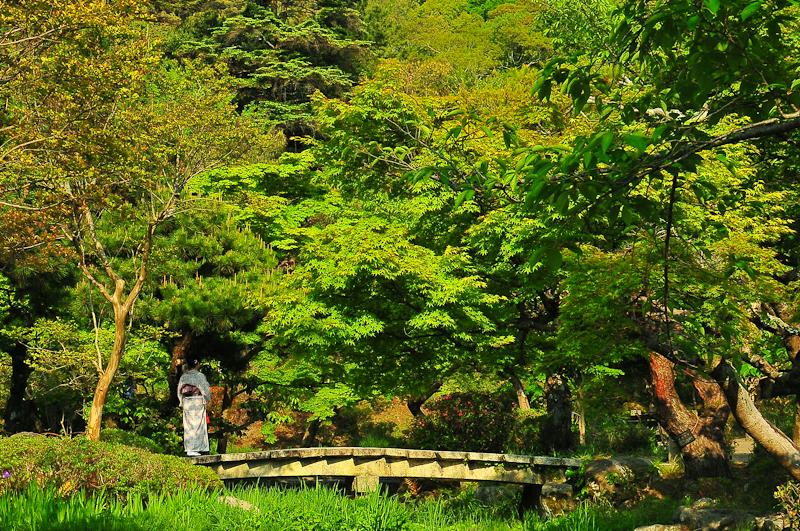 Dreams of Kyoto