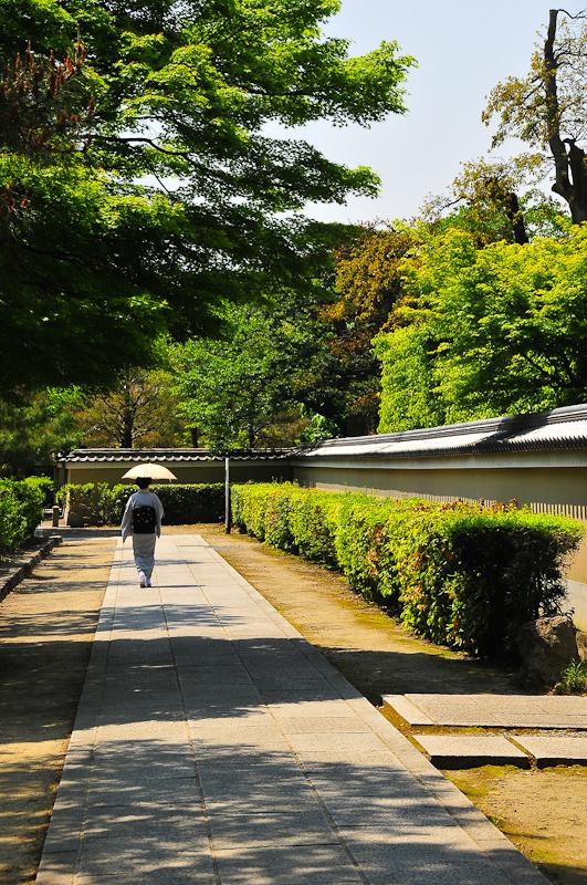 Kyoto Summer 「京の夏」