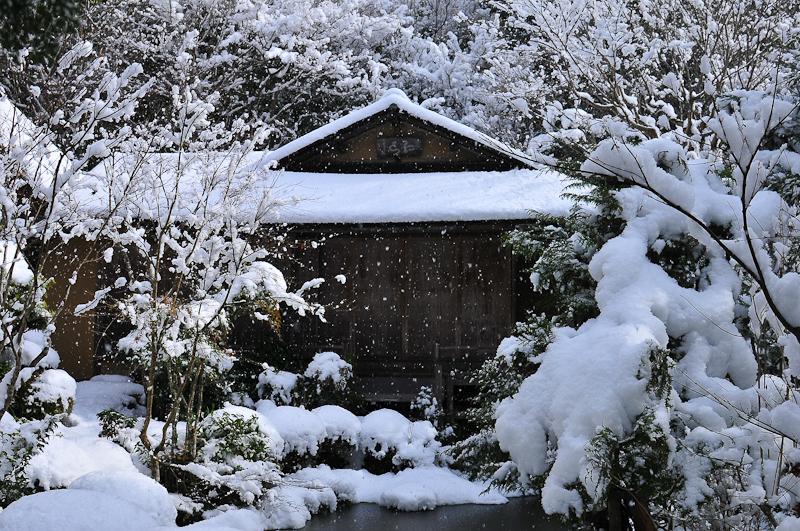 Snowy Teahouse