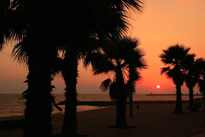 city sunset XI
