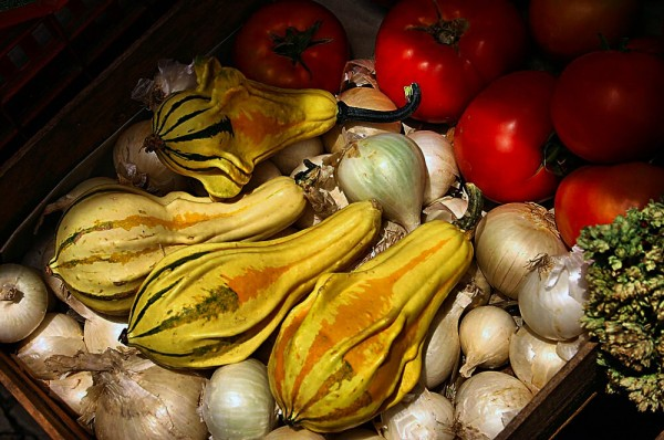 Fruits V