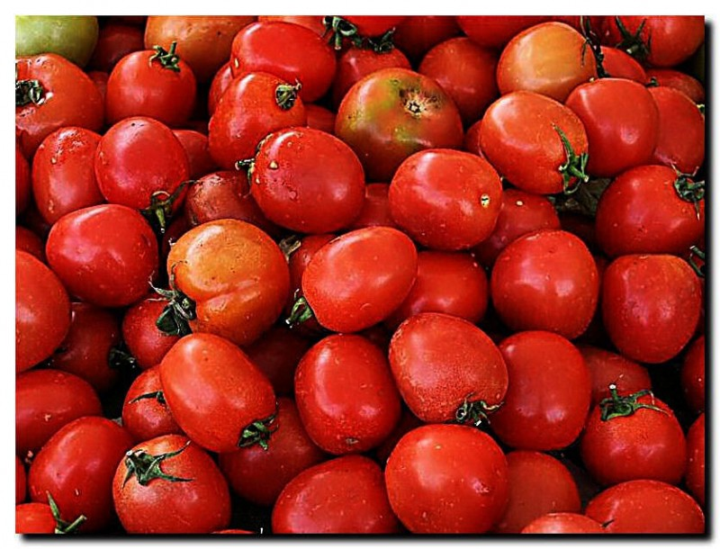 Fruits XI