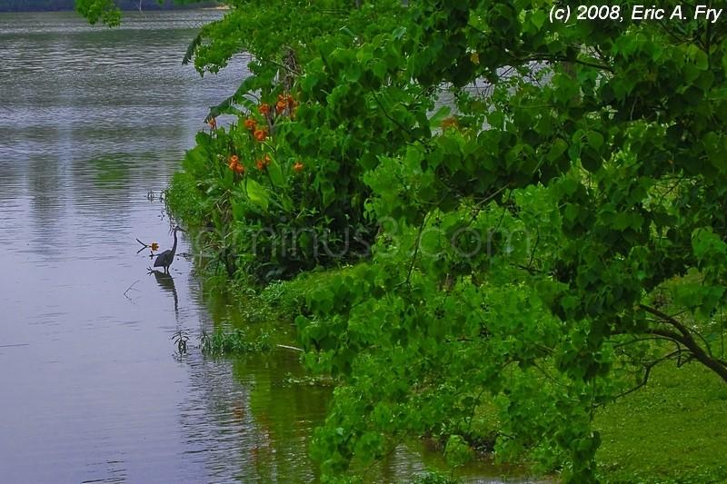 River Grove Park, Kingwood, TX