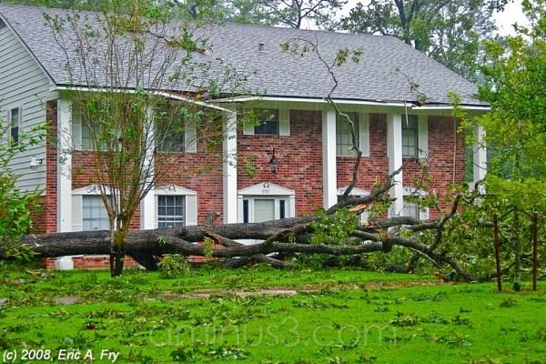 Hurricane Ike Series - Aftermath 3