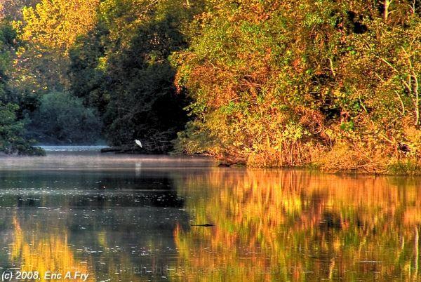 River Grove Park - Egret Cove