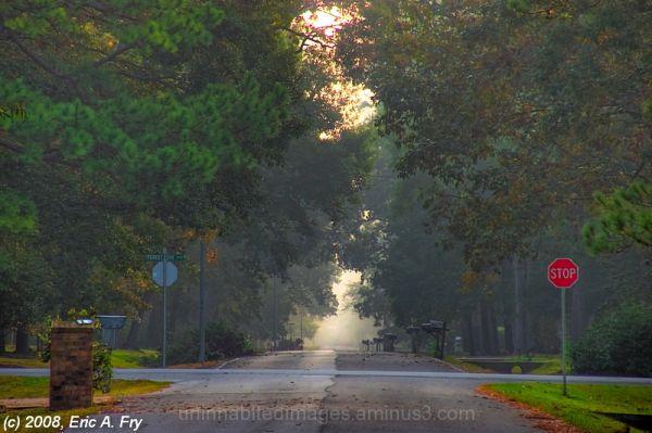 Foggy Morning 5