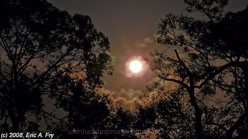 Spotlight from the Night Sky