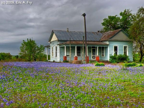 Blue Yard