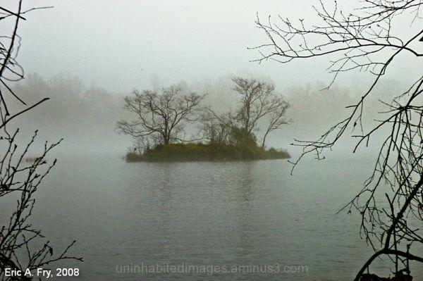Fog Island 1