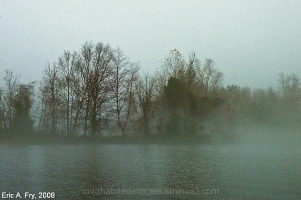 Fog Island 2