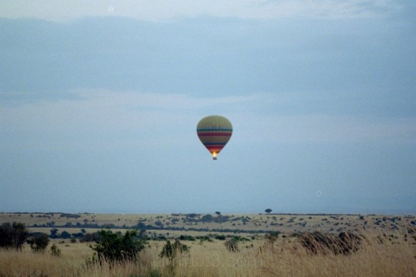 safari by air at sunrise