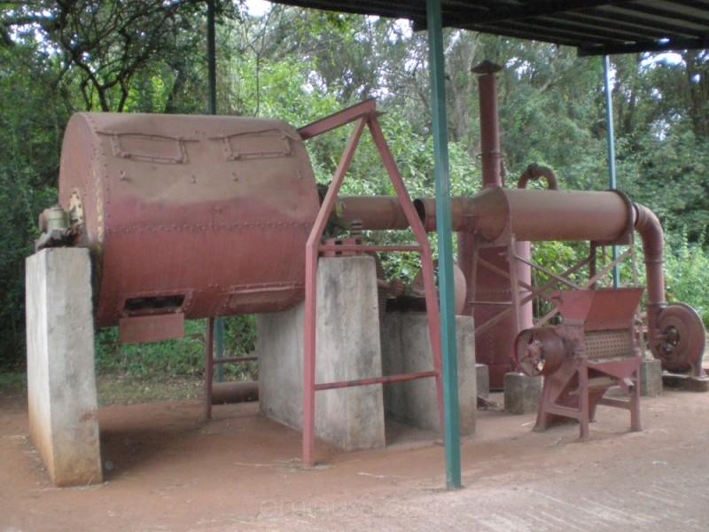 Karen Blixen coffee plantation